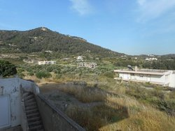 for Sale Plot 58.000€ Pastida (code Β-1350)